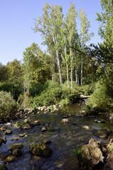 Hermon stream landscape near Golan Heights.