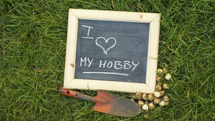 I love my hobby