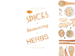 different spices and herbs on white background. top view