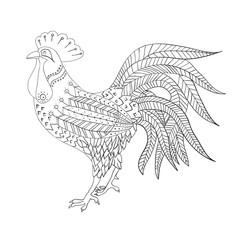 cock sketch