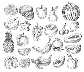 hand drawn fruit