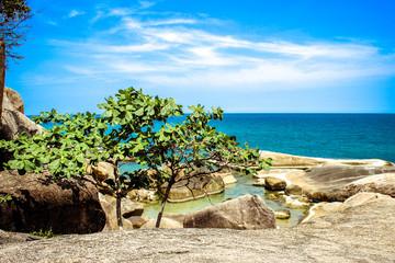 Idyllic Scene Beach at Samui Island