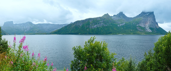 Fjord summer cloudy panorama (Norway)