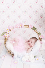 Newborn Kleine Prinzessin in einem Korb mit Blumen