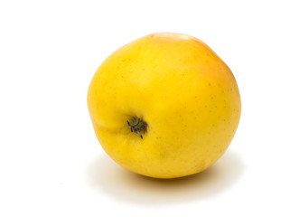 yellow apple on a white background