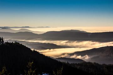 Morgenstimmung Schwarzwald