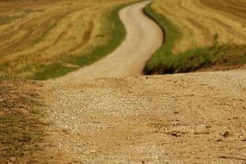 schmaler kiesweg II