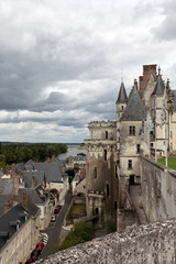 Vue sur Amboise et son château - tour des La tour des Minimes .