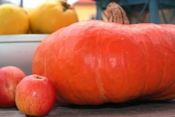 Kürbis, Quitten und Äpfel