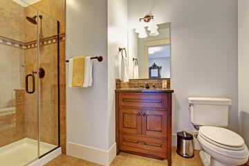 Bathroom interior with glass door shower
