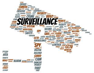 Surveillance word cloud shape