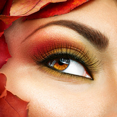 Autumn make up for brown eyes. Closeup fashion makeup