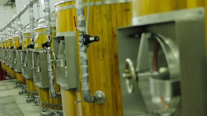 production of live beer brewing