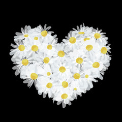 Summer bouquet heart shape made from daisy, sketch design