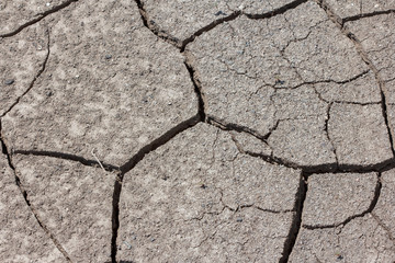Dry cracked earth on a sunny day
