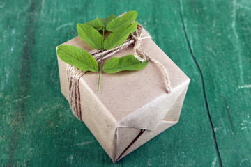 Natural style handcrafted gift box with fresh leaves and rustic