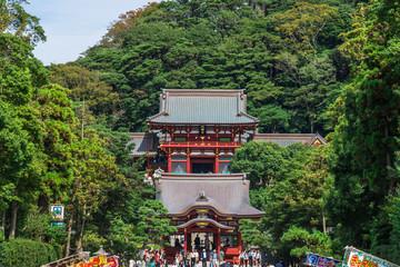 鎌倉 鶴岡八幡宮 Kamakaura