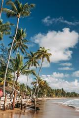 Taipu de Fora beach in Marau, Bahia, Brazil.