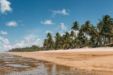 Low tide on Taipu de Fora beach, Marau, Brazil.