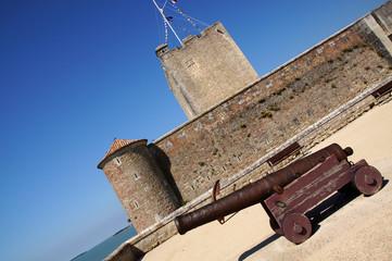 Canon devant le Fort de Fouras