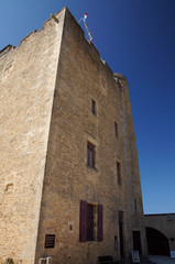 Donjon du Fort de Fouras