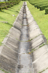 Concrete drainage channel in park.