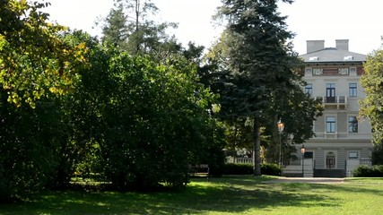 park - green nature (trees) - pavement and bench -sunny