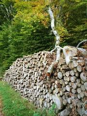 Baumstamm stürzt auf Holzstapel