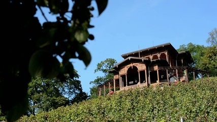 vineyard - wooden building - the tree - restaurant
