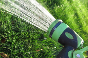 Watering lawn grass with an adjustable shower (spray)