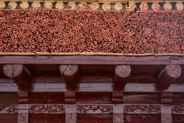 Roof detail of monastery in Leh