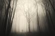 man walking past a huge old tree in a dark spooky forest - 71395593