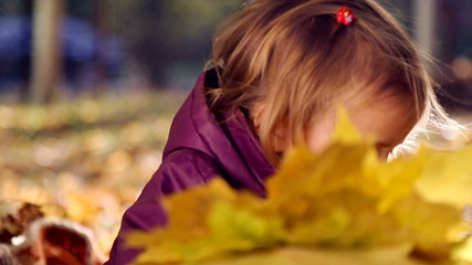Portrait of a baby in autumn park.Baby with yellow leaves