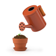 3D illustration. The flower in a pot waters from a watering can