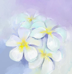 Plumeria-frangipani oil painting.White flowers oil painting