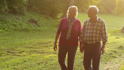 Senior Couple Walking in the Park on sunny autumn day.