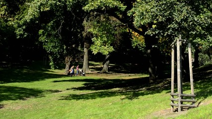 people walking in the park - nature (grass and trees) - sunny