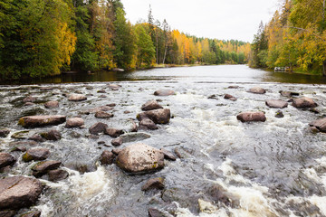 River rapids in autumn