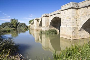 ancient bridge over Pisuerga river in Spain
