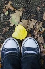 standing in autumn