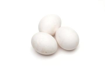 Egg on the white background