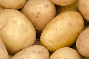 Potato Background