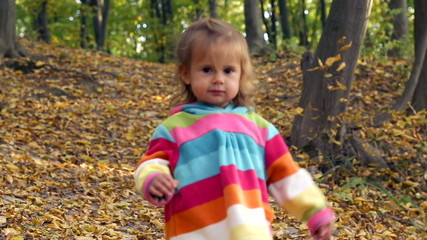 Small child playing in autumn park.
