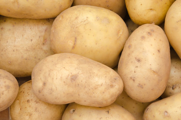 Potato Background