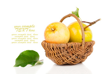 apple in a basket on white background
