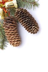 Christmas pine cones