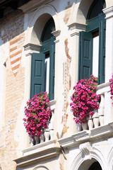 Windows with ornamental flowers