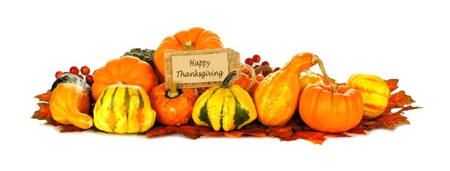 Happy Thanksgiving tag with autumn pumpkins and vegetables