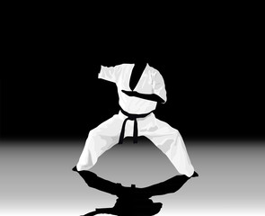 The illustration, the man is engaged in karate on a black white