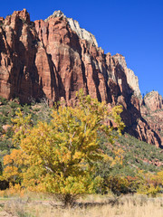 Court of the Patriarchs in Zion Canyon